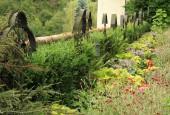 http://gardenpanorama.cz/wp-content/uploads/IMG_8670-170x115.jpg