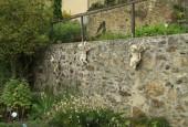 http://gardenpanorama.cz/wp-content/uploads/IMG_8687-170x115.jpg