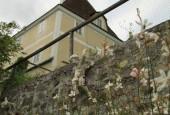 http://gardenpanorama.cz/wp-content/uploads/IMG_8690-170x115.jpg