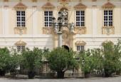 http://gardenpanorama.cz/wp-content/uploads/IMG_8712-170x115.jpg