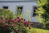 http://gardenpanorama.cz/wp-content/uploads/IMG_8716-170x115.jpg