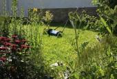 http://gardenpanorama.cz/wp-content/uploads/IMG_8719-170x115.jpg
