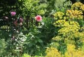 http://gardenpanorama.cz/wp-content/uploads/IMG_8735-170x115.jpg