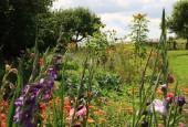 http://gardenpanorama.cz/wp-content/uploads/IMG_8736-170x115.jpg