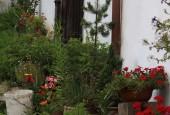 http://gardenpanorama.cz/wp-content/uploads/IMG_8743-170x115.jpg