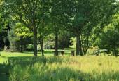 http://gardenpanorama.cz/wp-content/uploads/IMG_9178-170x115.jpg