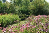 http://gardenpanorama.cz/wp-content/uploads/IMG_9179-170x115.jpg