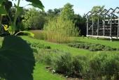 http://gardenpanorama.cz/wp-content/uploads/IMG_9183-170x115.jpg