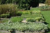 http://gardenpanorama.cz/wp-content/uploads/IMG_9189-170x115.jpg