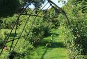 http://gardenpanorama.cz/wp-content/uploads/IMG_9200-170x115.jpg