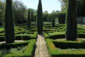 http://gardenpanorama.cz/wp-content/uploads/IMG_9216-170x115.jpg