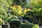 http://gardenpanorama.cz/wp-content/uploads/IMG_9757-170x115.jpg