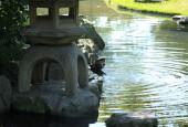 http://gardenpanorama.cz/wp-content/uploads/IMG_9760-170x115.jpg
