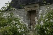 http://gardenpanorama.cz/wp-content/uploads/Neuer_Garten_Postupim__MG_2694_02-170x115.jpg