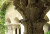 http://gardenpanorama.cz/wp-content/uploads/Saint_Paul_de_Mausole_IMG_7274_003-170x115.jpg