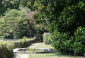 http://gardenpanorama.cz/wp-content/uploads/Villa_Cipressi_img_0250_005-170x115.jpg