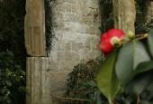 http://gardenpanorama.cz/wp-content/uploads/Zuschendorf_Kamelienschloss__mg_0732_012-170x115.jpg