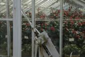http://gardenpanorama.cz/wp-content/uploads/Zuschendorf_Kamelienschloss__mg_0756_016-170x115.jpg