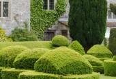 http://gardenpanorama.cz/wp-content/uploads/aveburyDSCF0066_017-170x115.jpg
