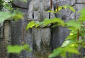 http://gardenpanorama.cz/wp-content/uploads/bomarzo-7-170x115.jpg