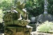 http://gardenpanorama.cz/wp-content/uploads/bomarzoimg_6550_005-170x115.jpg