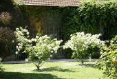 http://gardenpanorama.cz/wp-content/uploads/botanicka_rim_img_6952_07-170x115.jpg