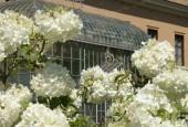 http://gardenpanorama.cz/wp-content/uploads/botanicka_rim_img_6955_03-170x115.jpg