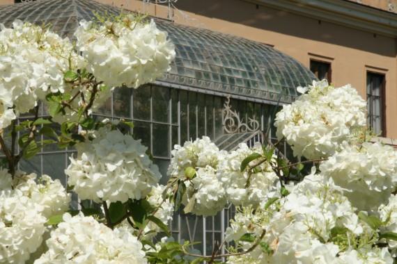 Botanická zahrada Řím