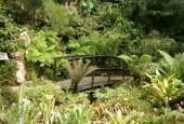 http://gardenpanorama.cz/wp-content/uploads/botanicka_zahrada_trojaimg_9290_002-170x115.jpg