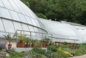 http://gardenpanorama.cz/wp-content/uploads/botanicka_zahrada_trojaimg_9313_014-170x115.jpg