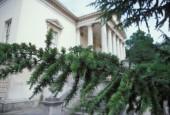 http://gardenpanorama.cz/wp-content/uploads/chicwick011-170x115.jpg
