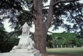 http://gardenpanorama.cz/wp-content/uploads/chicwick031-170x115.jpg