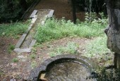 http://gardenpanorama.cz/wp-content/uploads/cicogna_img_0020_004-170x115.jpg