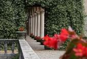 http://gardenpanorama.cz/wp-content/uploads/cicogna_img_0062_018-170x115.jpg