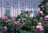 http://gardenpanorama.cz/wp-content/uploads/florencie_boboli_sken283_012-e1441038272316-170x115.jpg