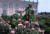 http://gardenpanorama.cz/wp-content/uploads/florencie_boboli_sken292_017-e1441038151197-170x115.jpg