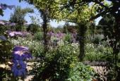 http://gardenpanorama.cz/wp-content/uploads/giverny_06-170x115.jpg