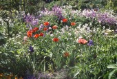 http://gardenpanorama.cz/wp-content/uploads/giverny_08-170x115.jpg