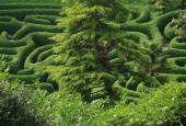http://gardenpanorama.cz/wp-content/uploads/glendurganimg_2590_0031-170x115.jpg