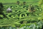 http://gardenpanorama.cz/wp-content/uploads/glendurganimg_2636_011-170x115.jpg