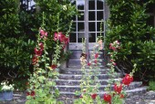 http://gardenpanorama.cz/wp-content/uploads/heale_sken208_003-170x115.jpg