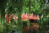 http://gardenpanorama.cz/wp-content/uploads/heale_sken238_010-170x115.jpg