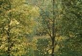 http://gardenpanorama.cz/wp-content/uploads/helbrun_DSCF0055_002-170x115.jpg
