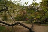 http://gardenpanorama.cz/wp-content/uploads/img_2470-170x115.jpg