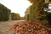 http://gardenpanorama.cz/wp-content/uploads/img_2505-170x115.jpg