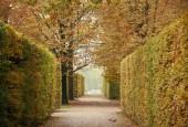 http://gardenpanorama.cz/wp-content/uploads/img_2555-170x115.jpg