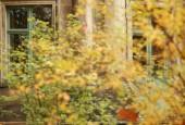 http://gardenpanorama.cz/wp-content/uploads/img_2575-170x115.jpg