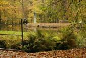 http://gardenpanorama.cz/wp-content/uploads/img_2581-170x115.jpg