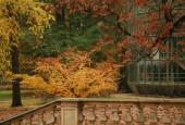 http://gardenpanorama.cz/wp-content/uploads/img_2599-170x115.jpg