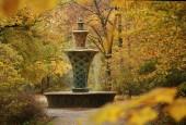 http://gardenpanorama.cz/wp-content/uploads/img_2684-170x115.jpg